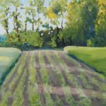landschap, akkers 40 x 100 olie